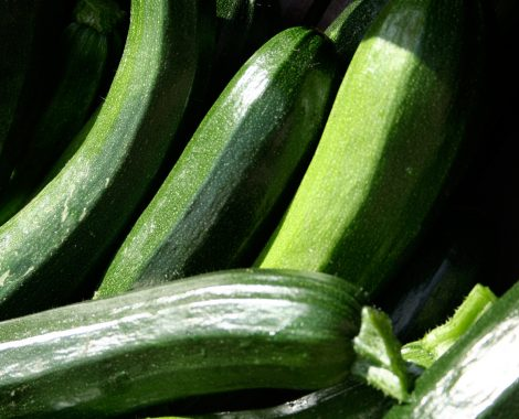 groente-1